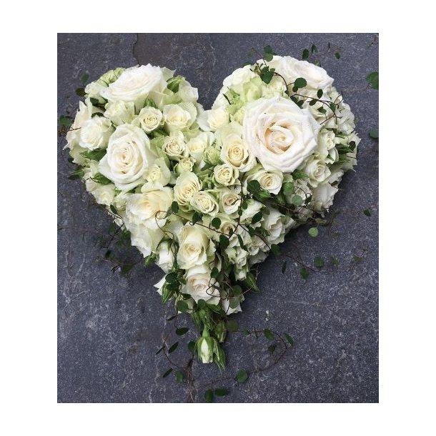 Rosehjerte, hvitt